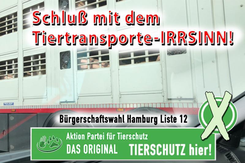 Tiertransporte-Irrsinn muss aufhören