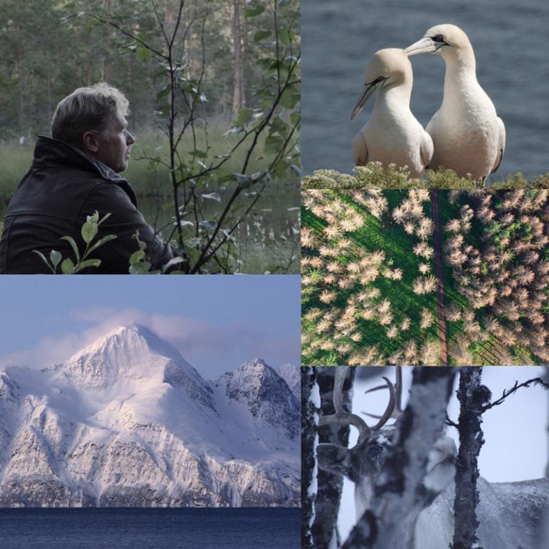 Das Vermächtnis - ein Film von Jens Klingebiel